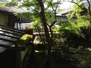 �H渡り廊下(客殿〜宸殿).JPG