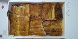 松 鰻弁当.jpg